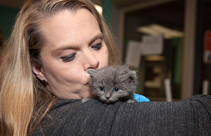 Volunteer Heather Ramsey kissing a gray kitten