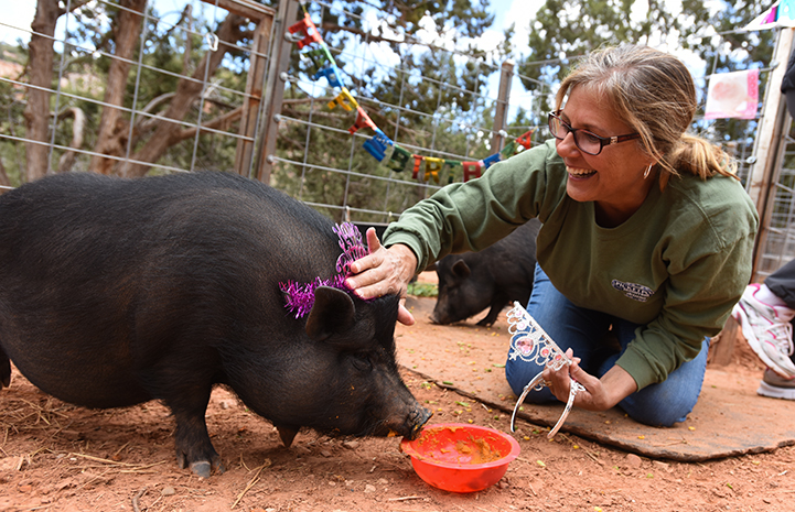 Mary Ann O'Donnell attending the first birthday party for piglets at Marshall's Piggy Paradise