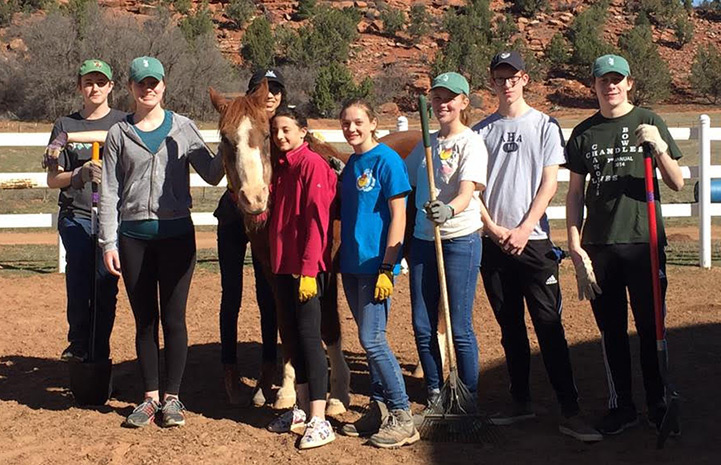 The Concord Academy student volunteers helping at Horse Haven