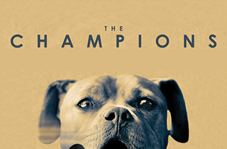 Watch The Champions movie trailer