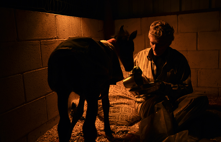 Linda with Prince the baby horse during her night watch