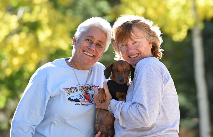 Dixon the dachshund is adopted!