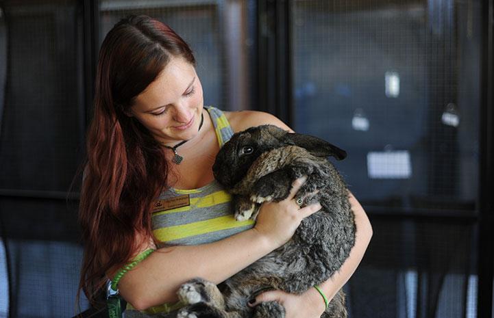 Caregiver Heather holding Bodie the Flemish rabbit