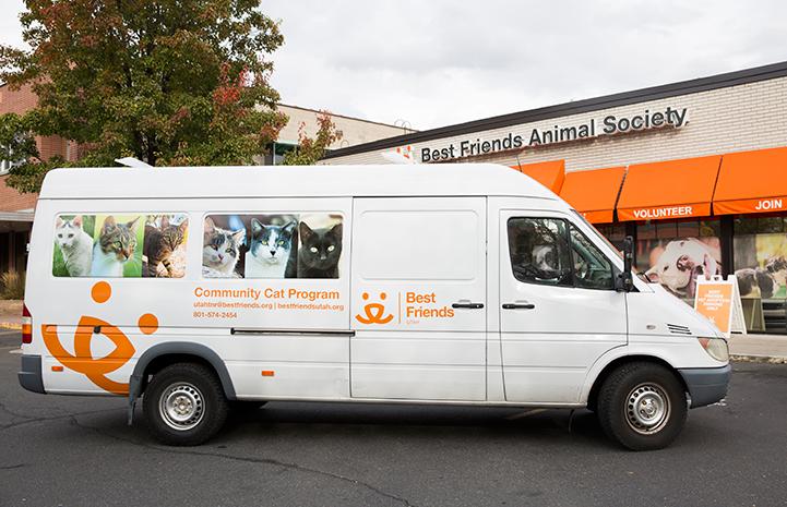 Community cat van