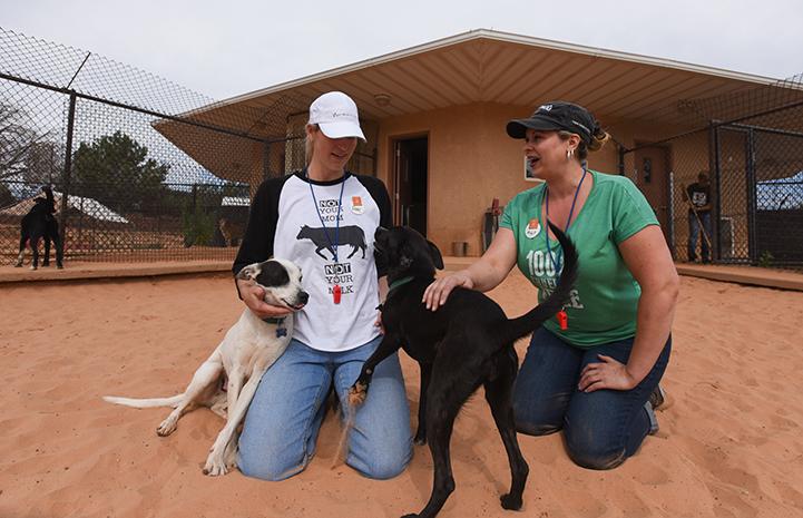 Mindy, a vegan chef, volunteering at Dogtown