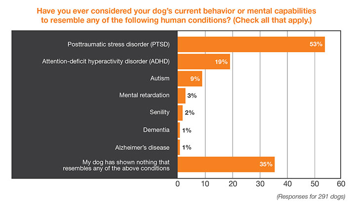 Chart: Have you ever considered your dog's current behavior or mental capabilities to resemble any of the following human conditions?