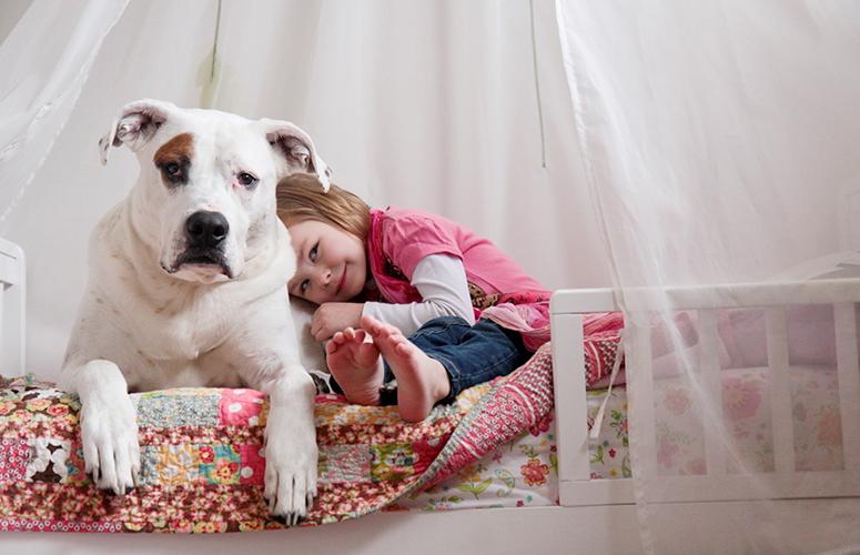 Pitbull and child