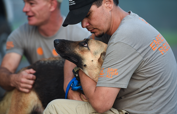 John Garcia comforts a pregnant German shepherd displaced by the hurricane
