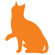 Saving kittens, community cats and hard-to-place cats track icon