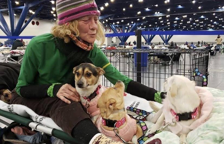 Woman wearing a hat in a convention center with three small dogs