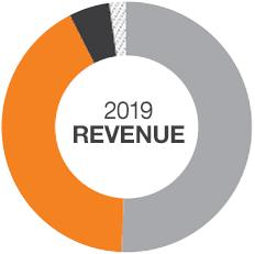 2019 revenue