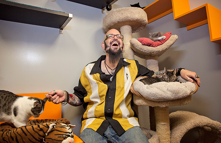 Jackson Galaxy in a room surrounded by cats