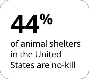 44% No-Kill