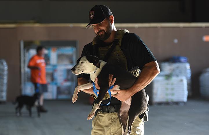 Men and women in uniform volunteer to help pets after Hurricane Harvey in Houston