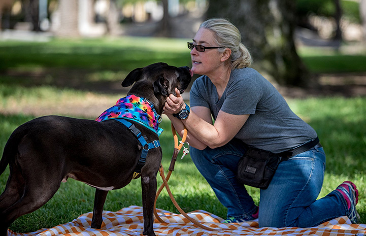 Gunner the dog wearing a rainbow colored bandanna being held by a woman while both sitting on a blanket on the grass