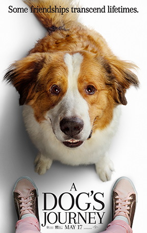 A DOG'S JOURNEY movie poster featuring Bailey the dog with PG rating
