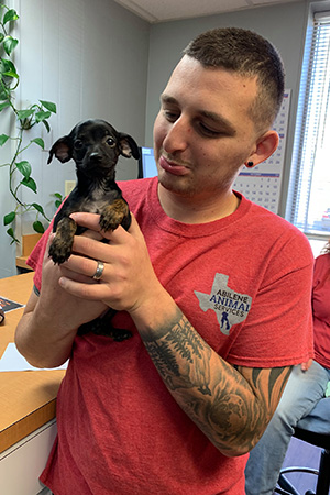 Smiling man holding a small Chihuahua type puppy