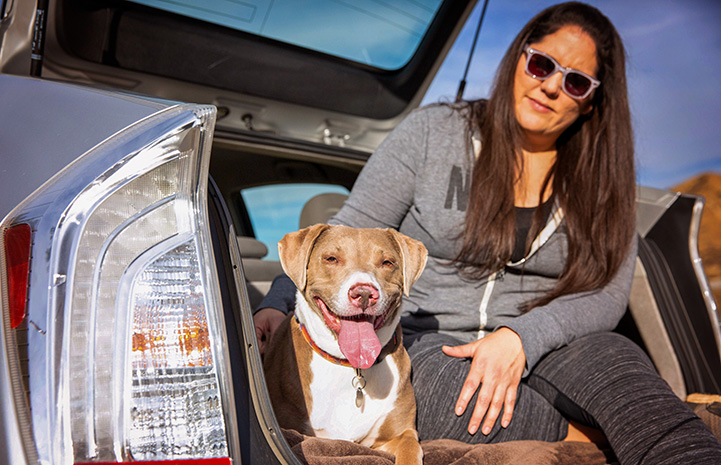 Woman sitting in the back of an open hatchback car with the brown and white dog she adopted
