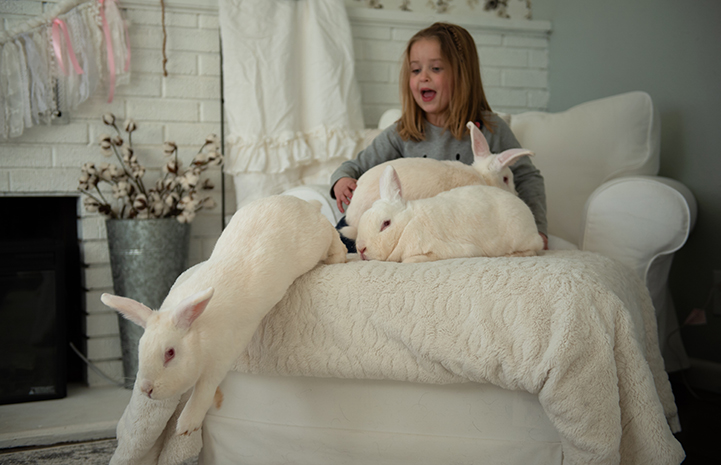 Diem, a five-year-old girl, on a bed with white rabbits, with one jumping off