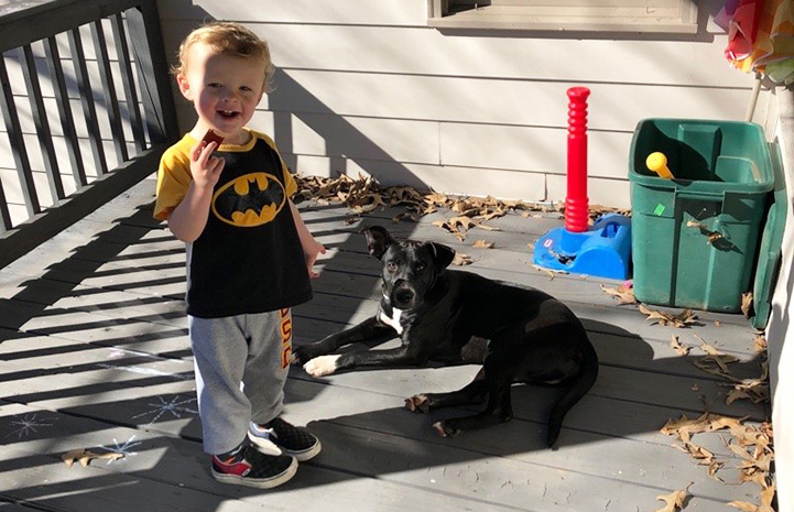 A young boy wearing a Batman shirt with Charlie the dog outside on a deck