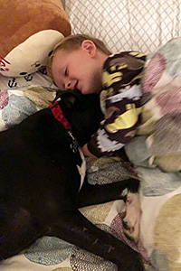 Charlie the dog sleeping in a bed with a young boy