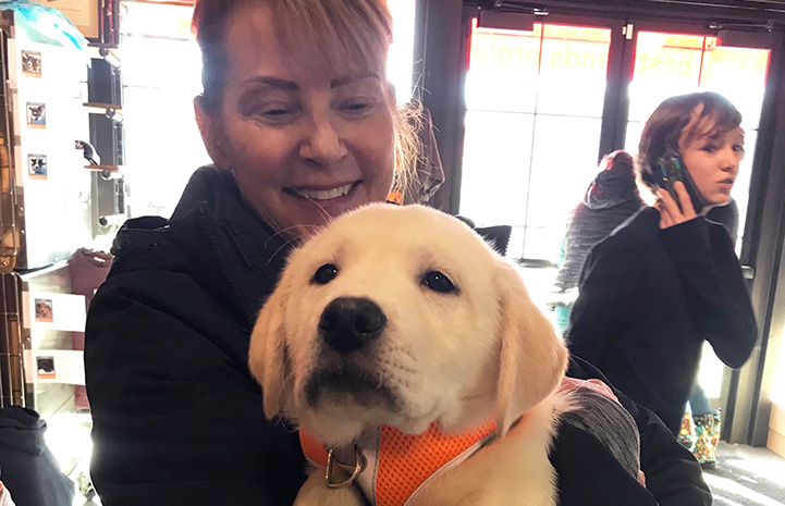 Smiling woman holding a yellow Labrador-type puppy wearing an orange harness