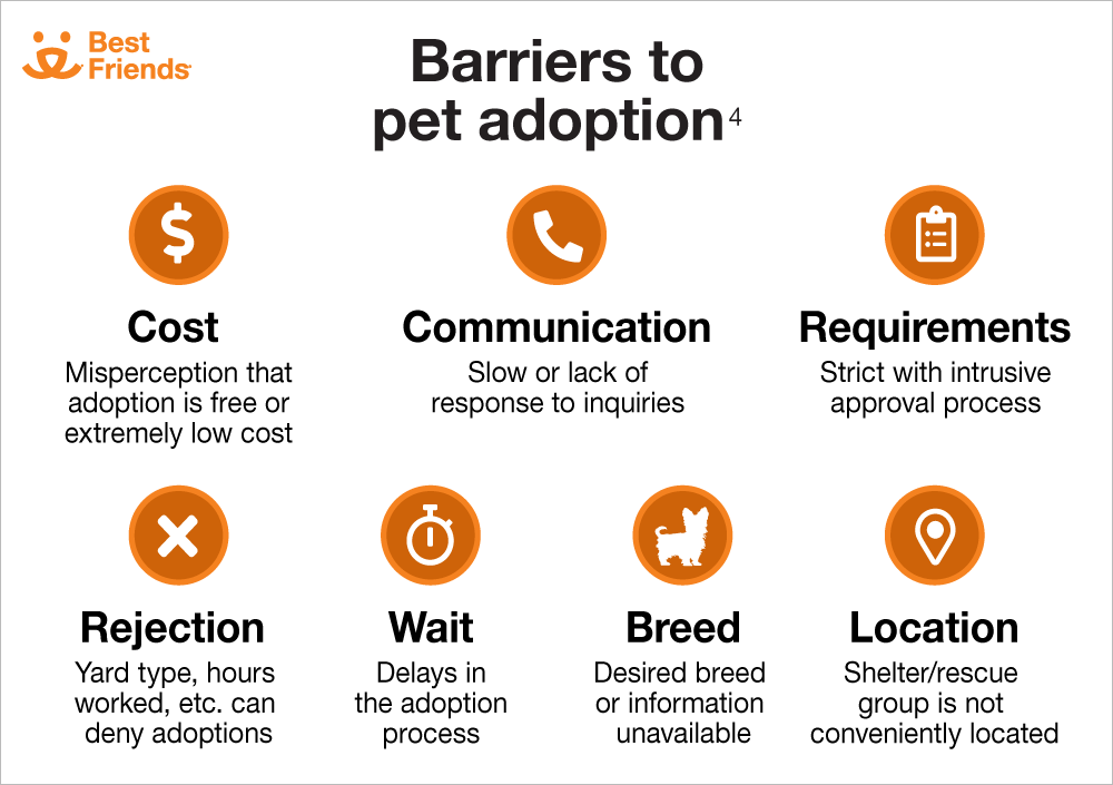 Barriers to Pet Adoption