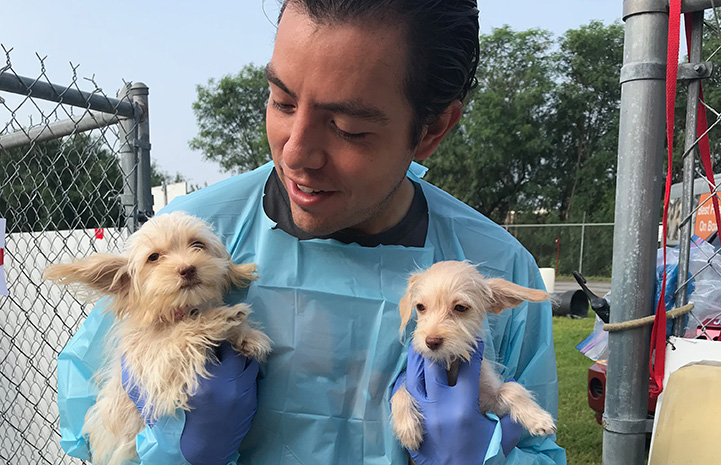 Luis Quintanilla holding two little puppies
