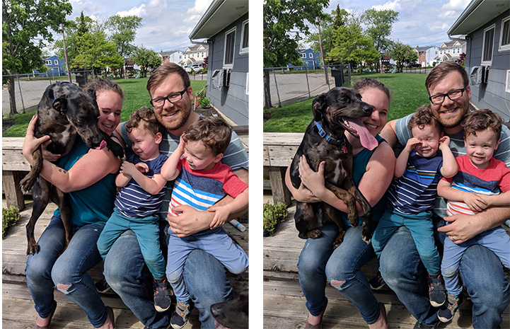 Side-by-side outtake photos of family photos that are attempting to get two children and a dog