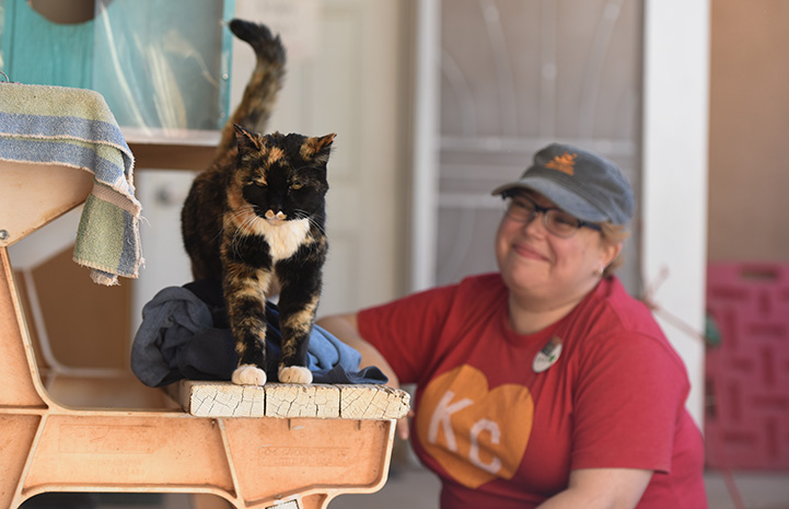 Smiling woman behind Meow the cat who is standing on a picnic table bench