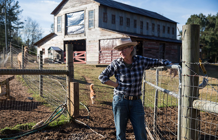 Woman wearing a plaid shirt and hat leaning against a fence with a barn and cat in the background