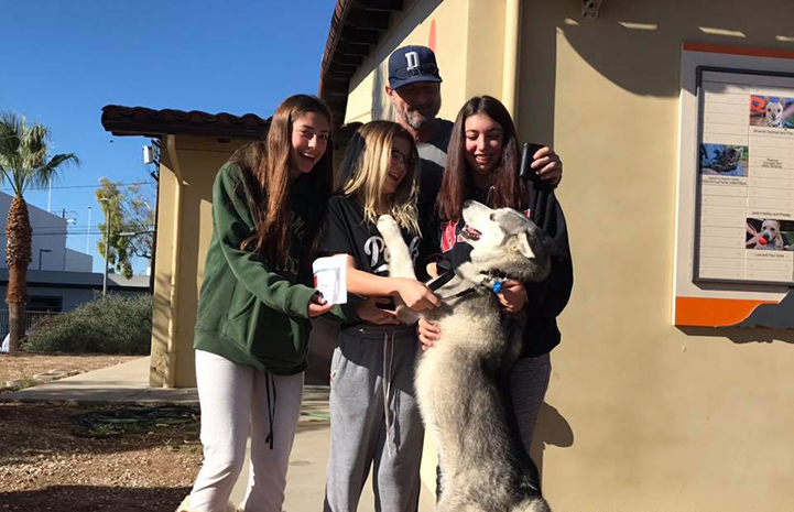 Casper the husky jumping up on group of people who are adopting him