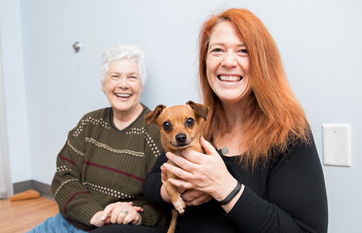 Two smiling women with a small brown dog who is also smiling because he'd just been adopted