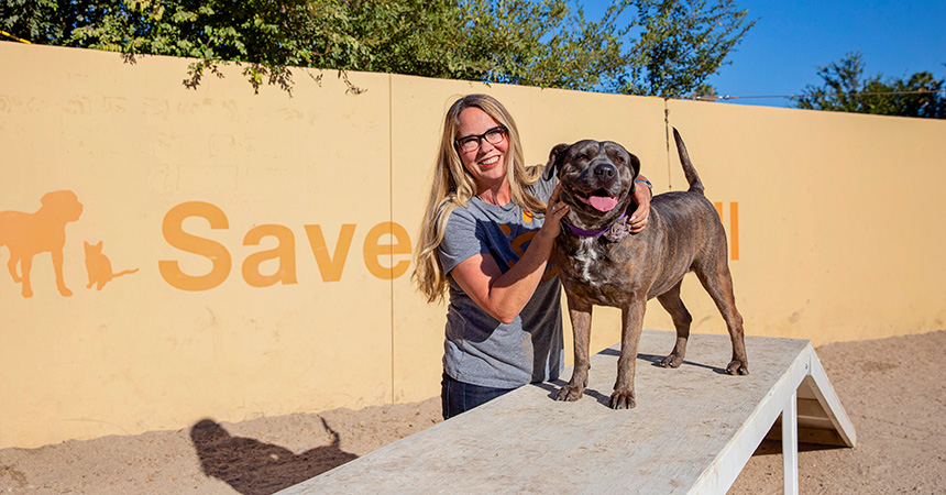 Julie Castle with a smiling brindle dog on some agility equipment with a wall behind them with Save Them All