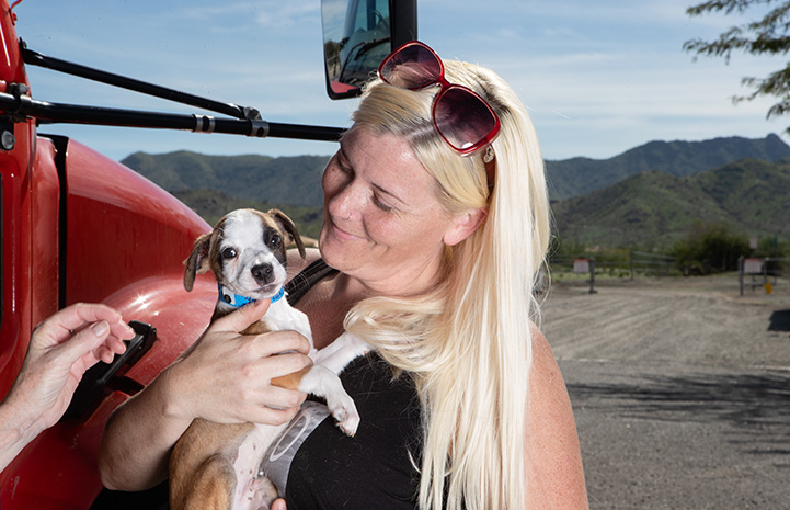Smiling woman with sunglasses on the top of her head holding a cute brown and white puppy in front of a transport vehicle