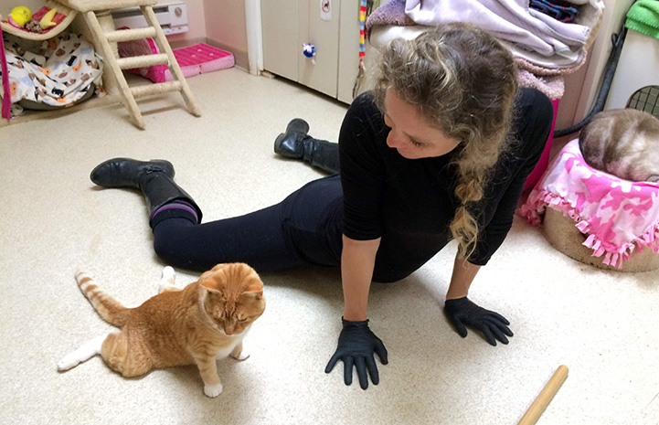 Annabelle doing a yoga pose with Solarflare the cat