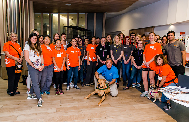 Tyler the once rowdy dog with staff and volunteers at the Clear the Shelters event at Best Friends in New York