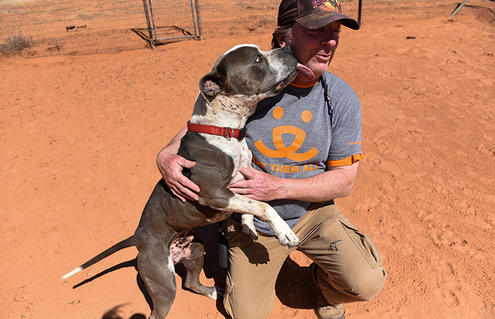 Jango the dog jumping up to give Dogtown caregiver Tom a kiss on the face