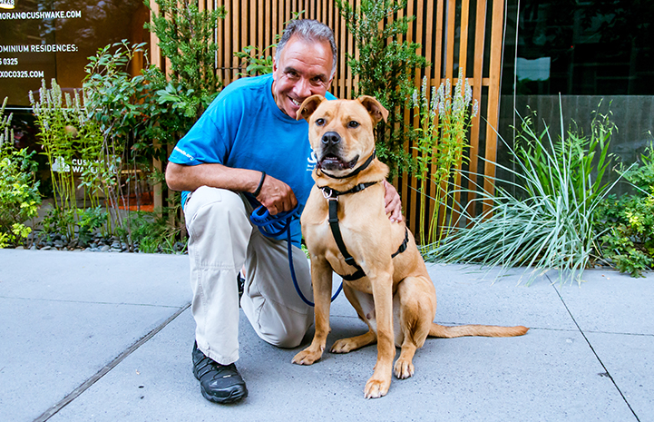 Peter began to visit Tyler the dog at least four days a week, walking and training him