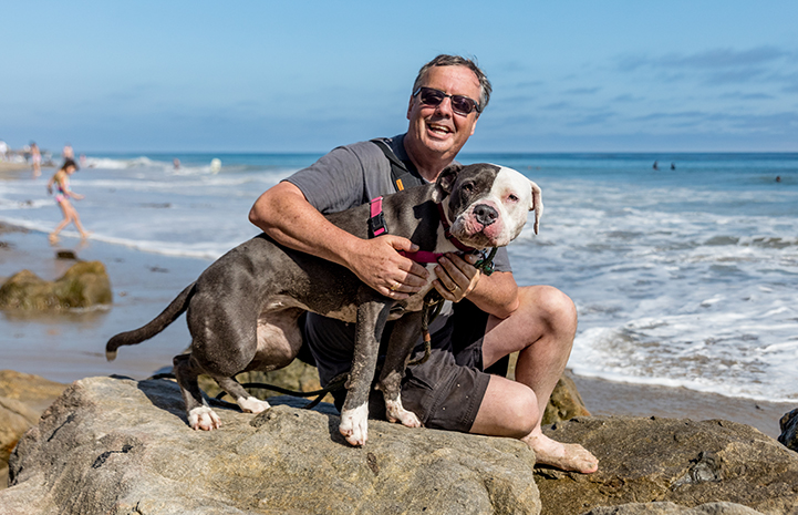 Nina the dog joined Todd and his family for a Father's Day celebration on the beach