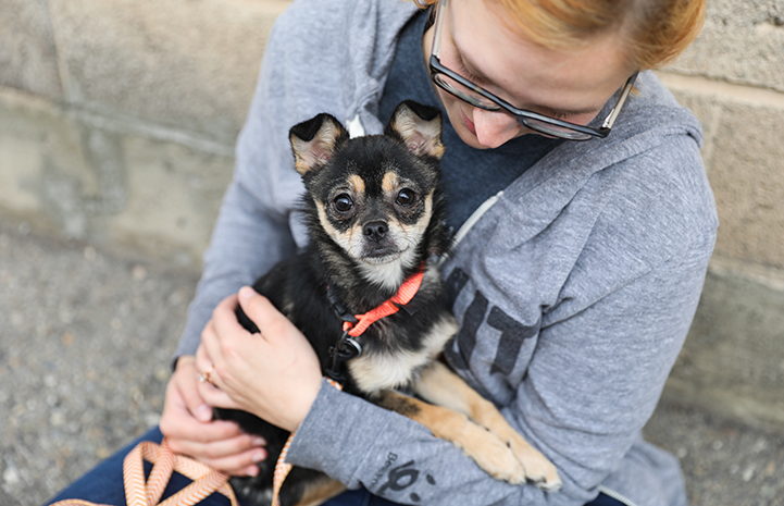 Woman hugging and holding a small black and tan dog in her lap