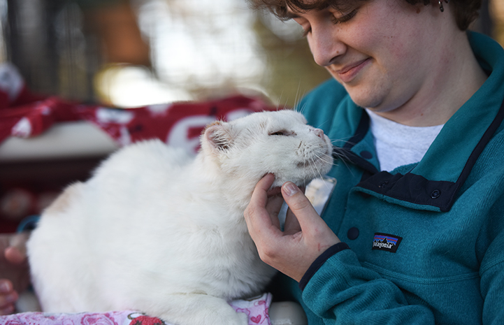 Woman smiling and scratching the chin of a white cat
