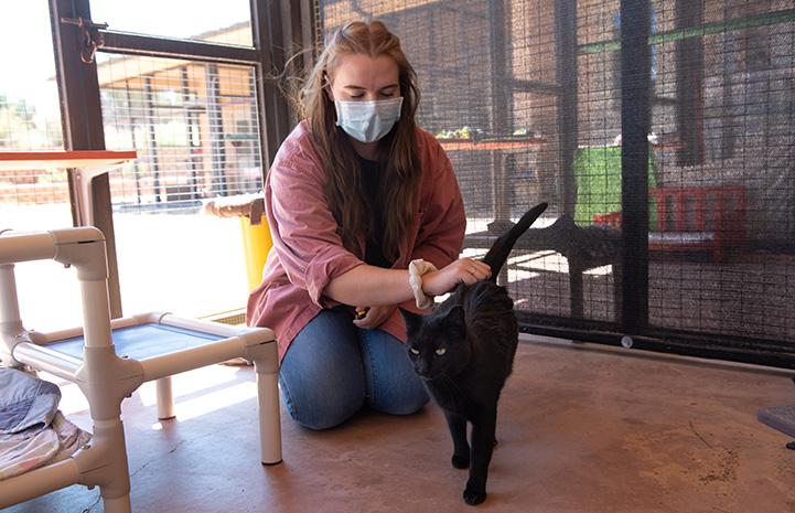 Caregiver Ashley petting Peridot the cat