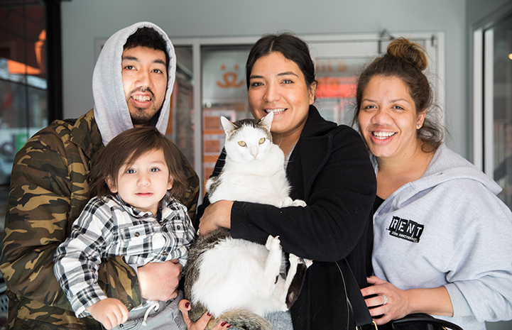 Dwight Schrute, the white and brown tabby cat, getting adopted by the  Ayoso family