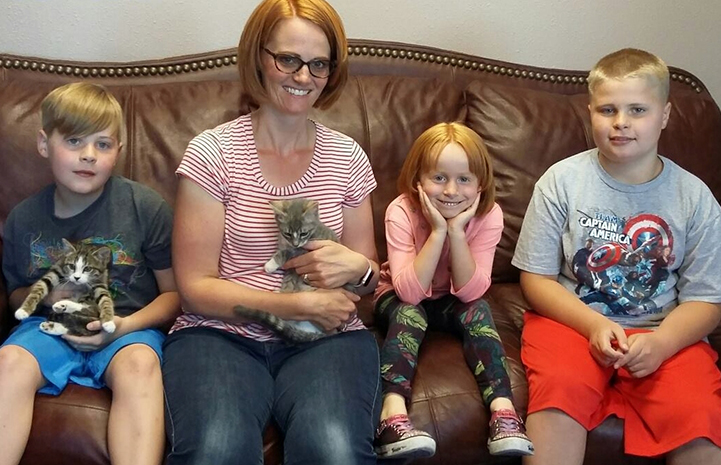 Olive and Bliss the kittens found homes at adoption promotions, thanks to the Save Them All Grant