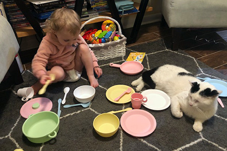 Russell the cat having a tea party with the child in his new family
