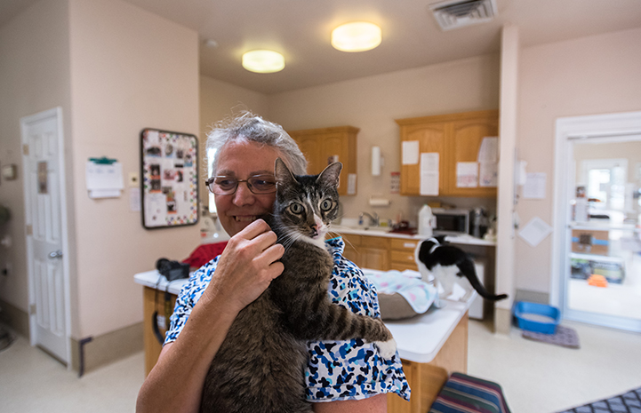 Smiling woman Cat World caregiver holding Lance the cat
