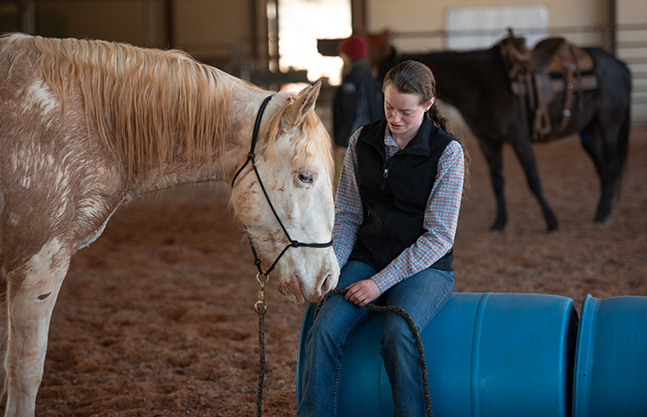 Woman sitting on a blue barrel petting a horse whose head is by her lap