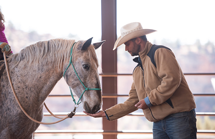Horse eating something out of the open hand of a man wearing a cowboy hat