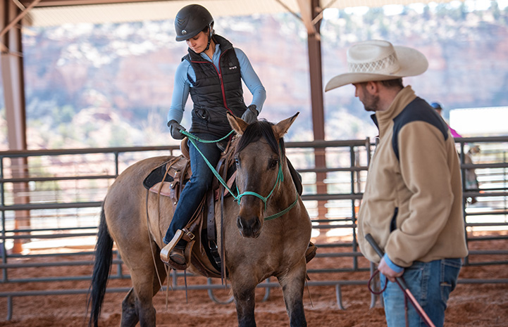Woman holding the reins on a horse while a man in a cowboy hat watches